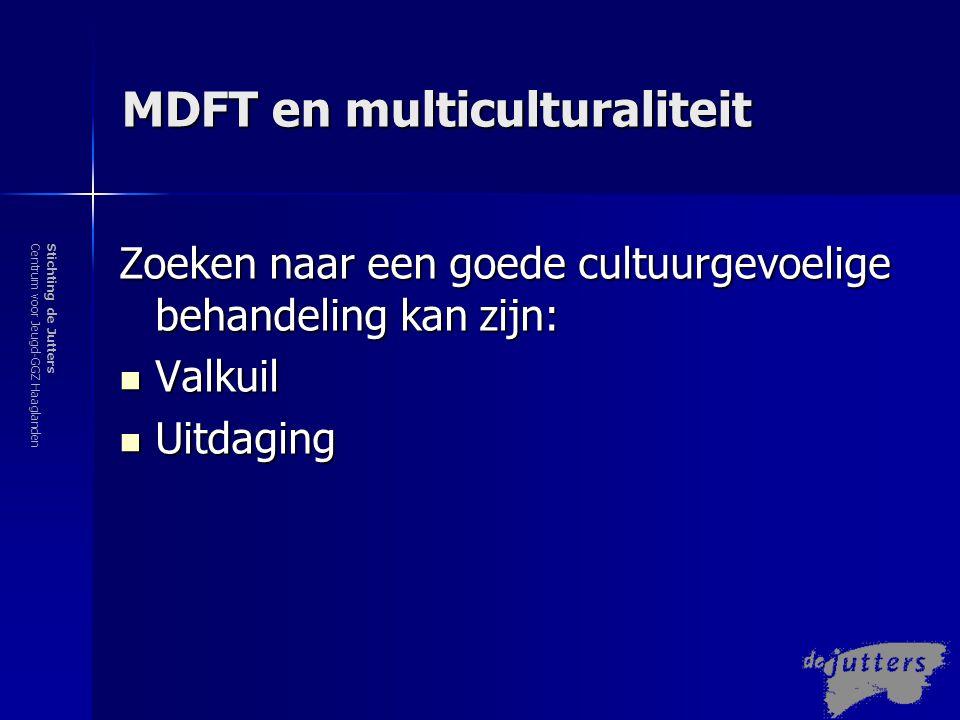 MDFT en multiculturaliteit