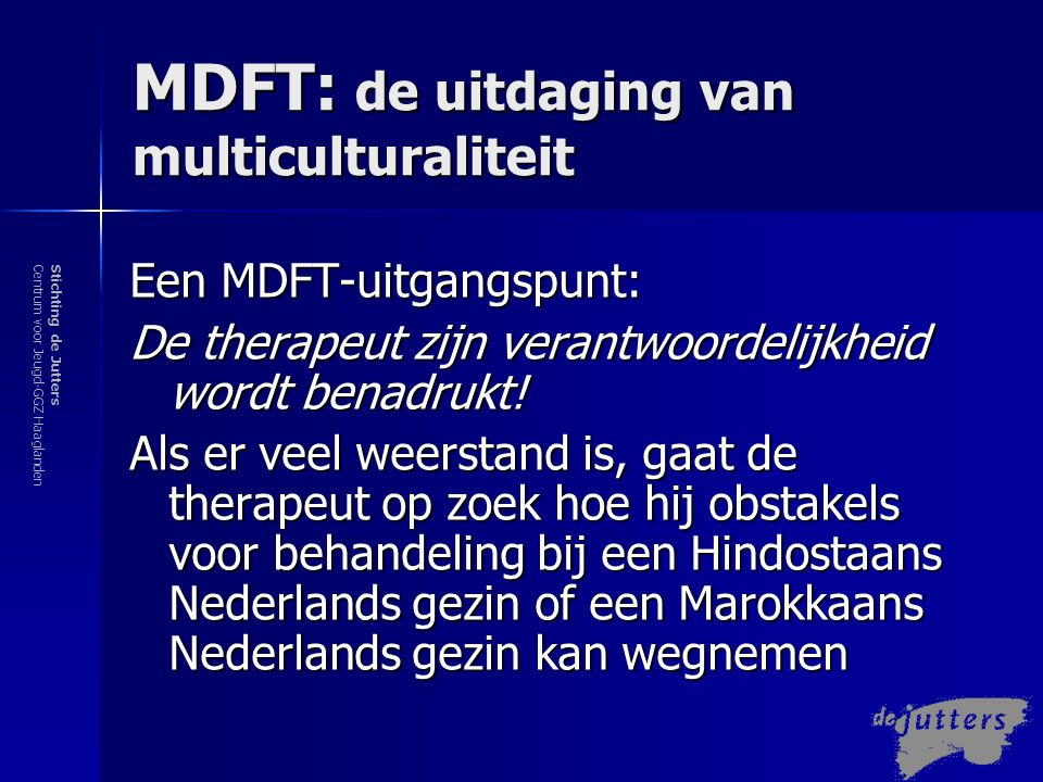 MDFT: de uitdaging van multiculturaliteit