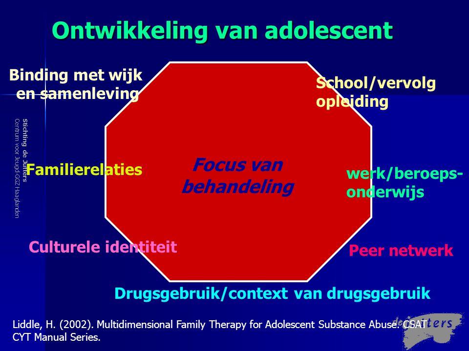 Ontwikkeling van adolescent