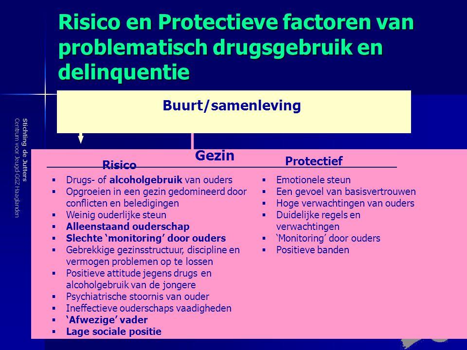 Risico en Protectieve factoren van problematisch drugsgebruik en delinquentie