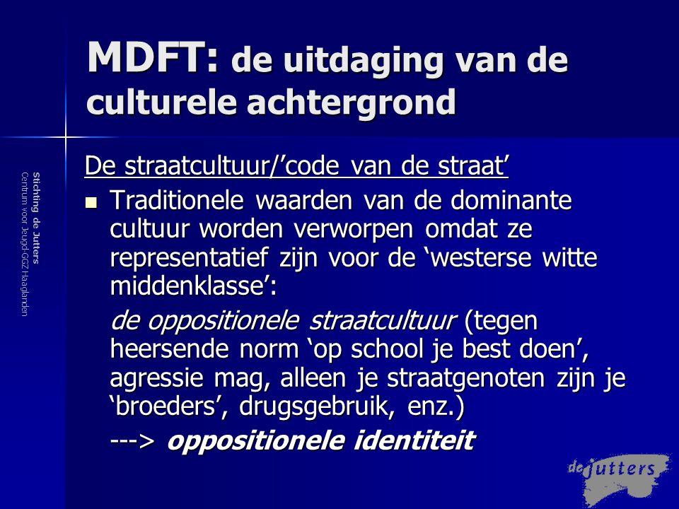 MDFT: de uitdaging van de culturele achtergrond