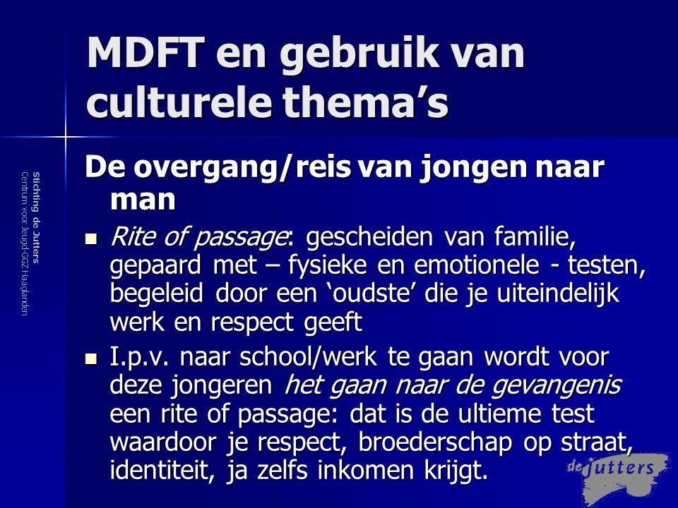 MDFT en gebruik van culturele thema's