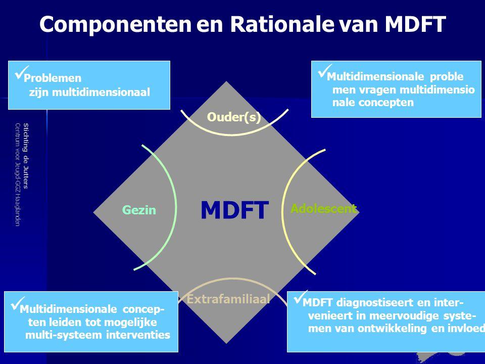 Componenten en Rationale van MDFT