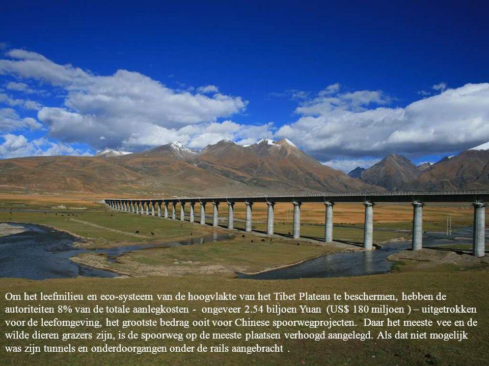 Om het leefmilieu en eco-systeem van de hoogvlakte van het Tibet Plateau te beschermen, hebben de autoriteiten 8% van de totale aanlegkosten - ongeveer 2.54 biljoen Yuan (US$ 180 miljoen ) – uitgetrokken voor de leefomgeving, het grootste bedrag ooit voor Chinese spoorwegprojecten. Daar het meeste vee en de wilde dieren grazers zijn, is de spoorweg op de meeste plaatsen verhoogd aangelegd.