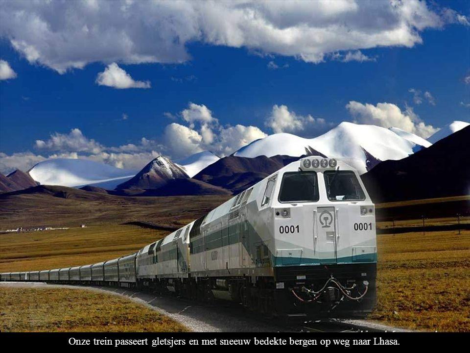 Onze trein passeert gletsjers en met sneeuw bedekte bergen op weg naar Lhasa.