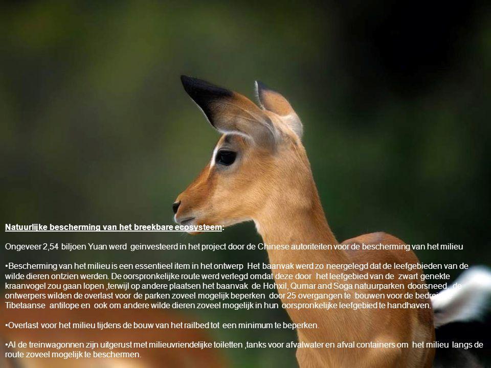 Natuurlijke bescherming van het breekbare ecosysteem: