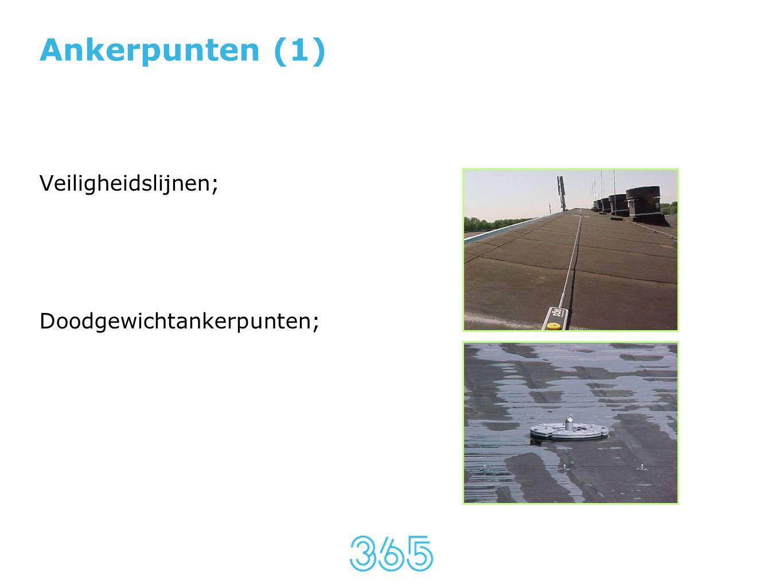 Ankerpunten (1) Veiligheidslijnen; Doodgewichtankerpunten;