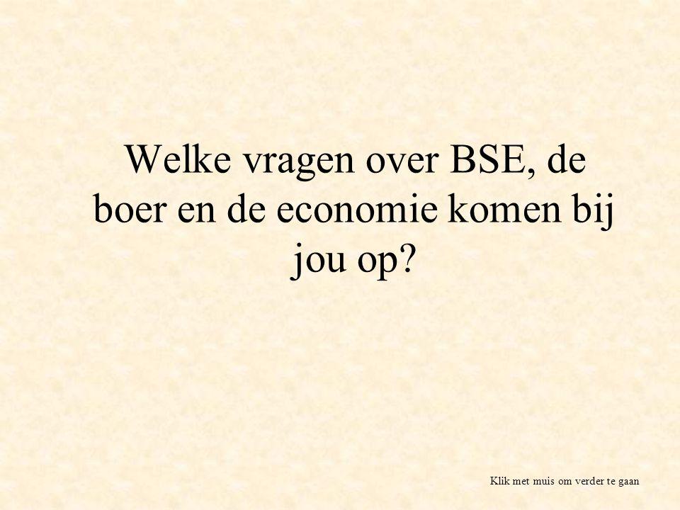 Welke vragen over BSE, de boer en de economie komen bij jou op