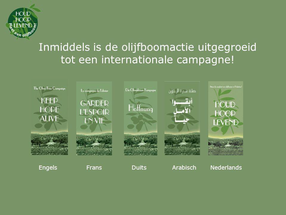 Inmiddels is de olijfboomactie uitgegroeid tot een internationale campagne!