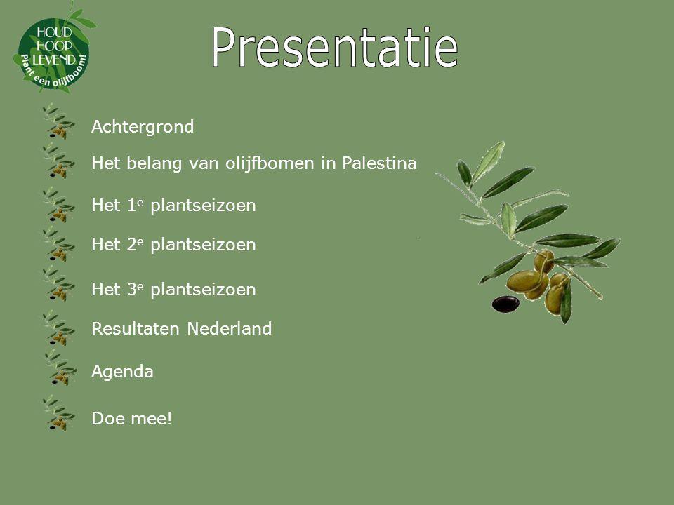 Presentatie Achtergrond Het belang van olijfbomen in Palestina