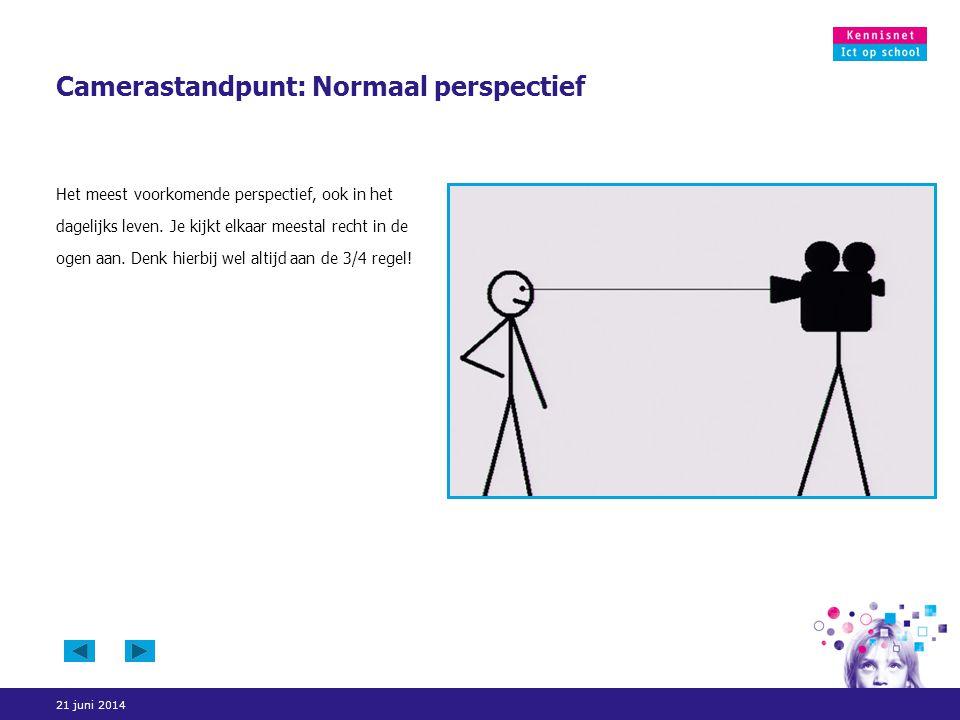 Camerastandpunt: Normaal perspectief