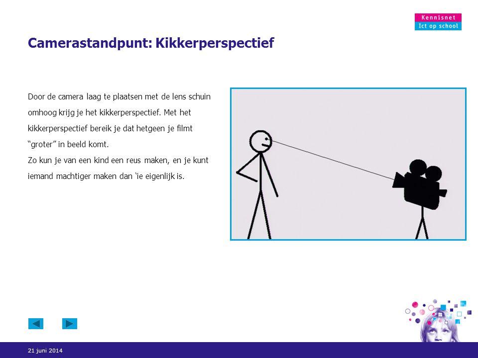 Camerastandpunt: Kikkerperspectief