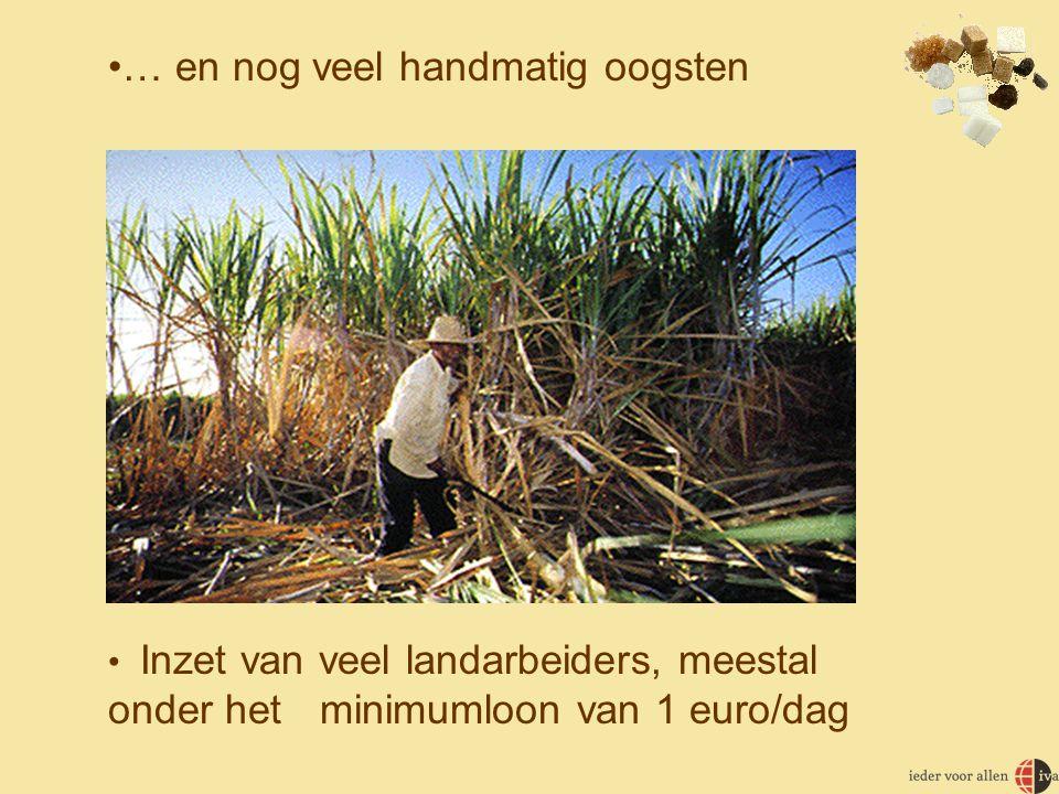 … en nog veel handmatig oogsten
