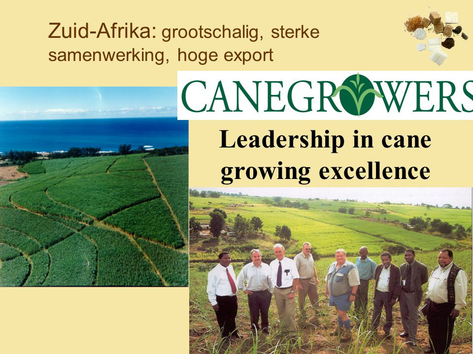 Zuid-Afrika: grootschalig, sterke samenwerking, hoge export