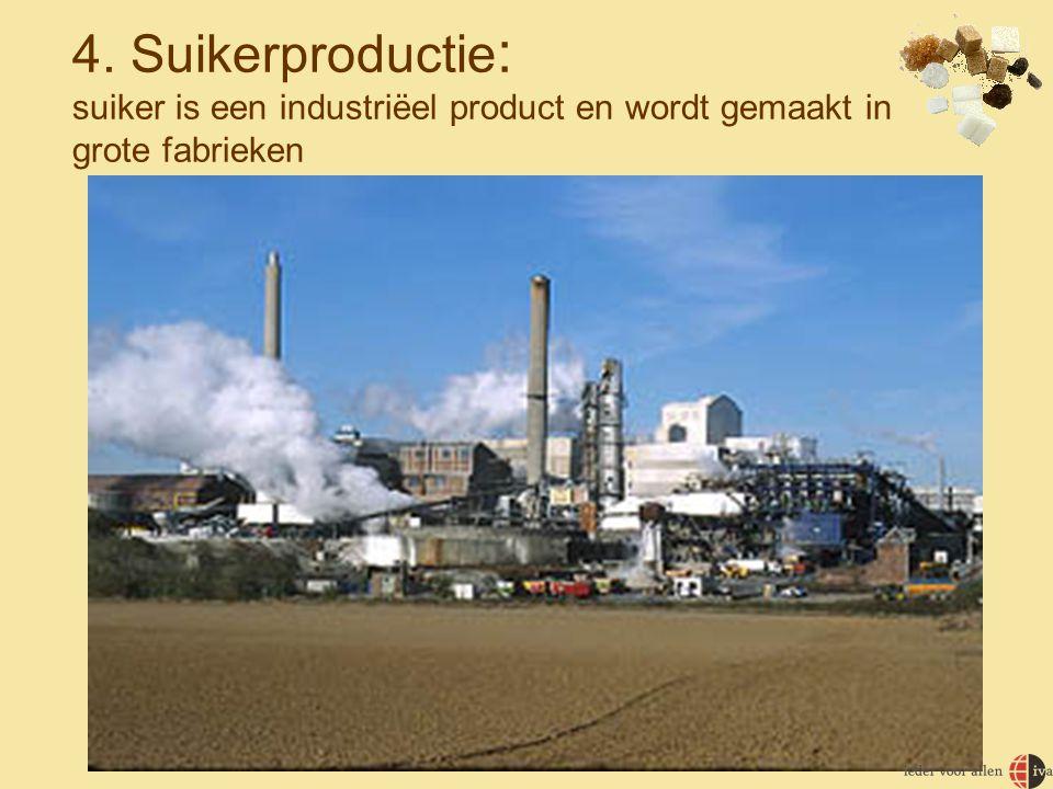 4. Suikerproductie: suiker is een industriëel product en wordt gemaakt in grote fabrieken
