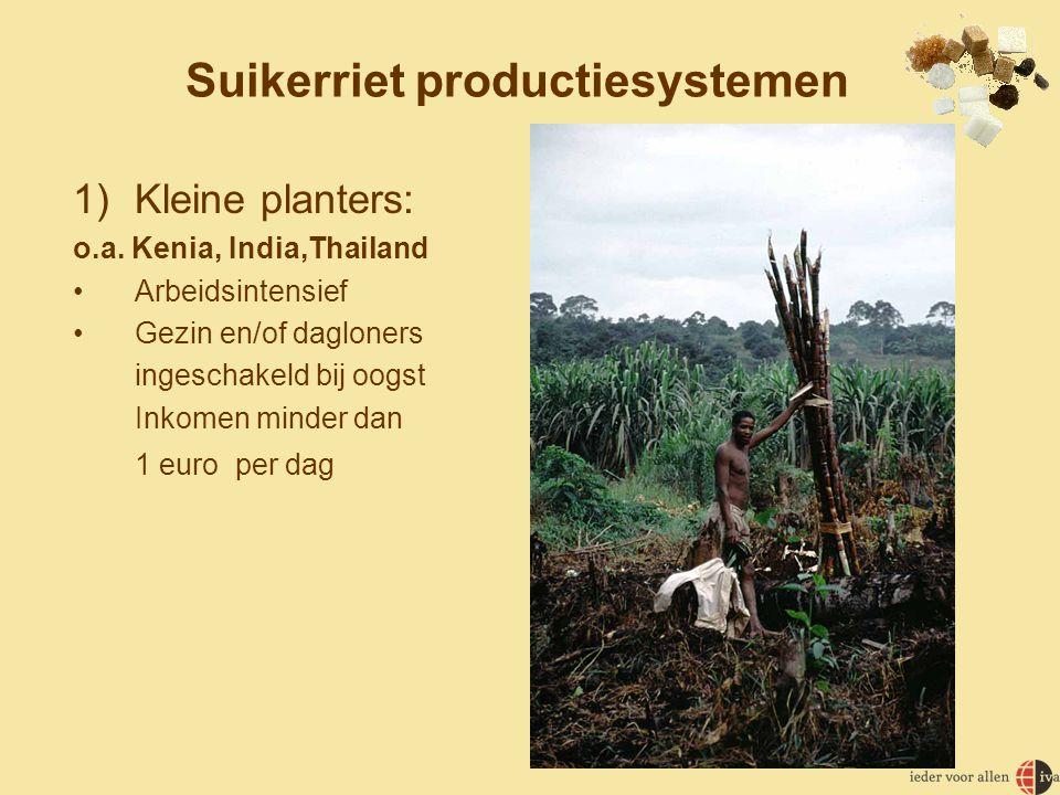 Suikerriet productiesystemen