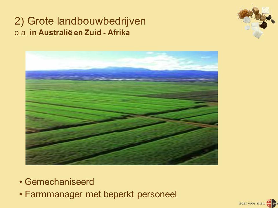2) Grote landbouwbedrijven