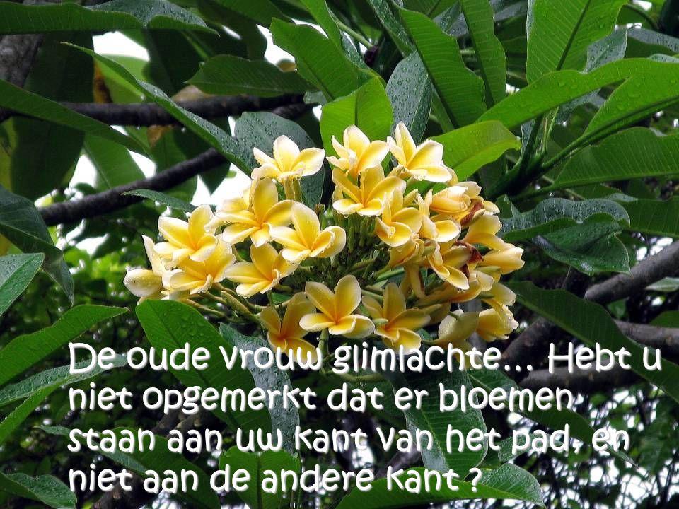 De oude vrouw glimlachte… Hebt u niet opgemerkt dat er bloemen staan aan uw kant van het pad, en niet aan de andere kant