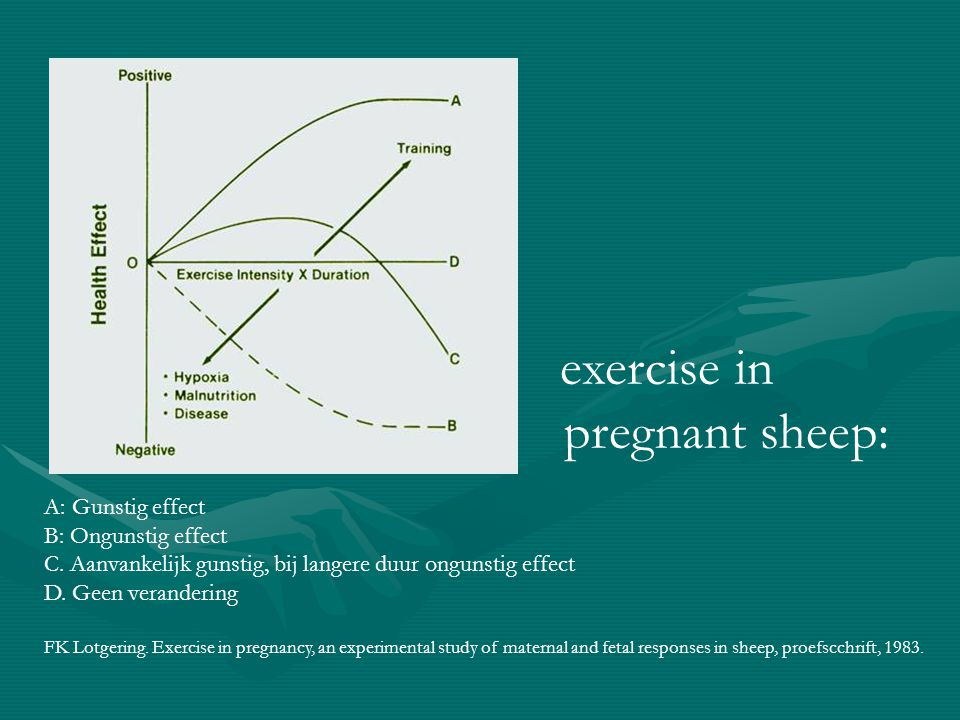 pregnant sheep: exercise in A: Gunstig effect B: Ongunstig effect