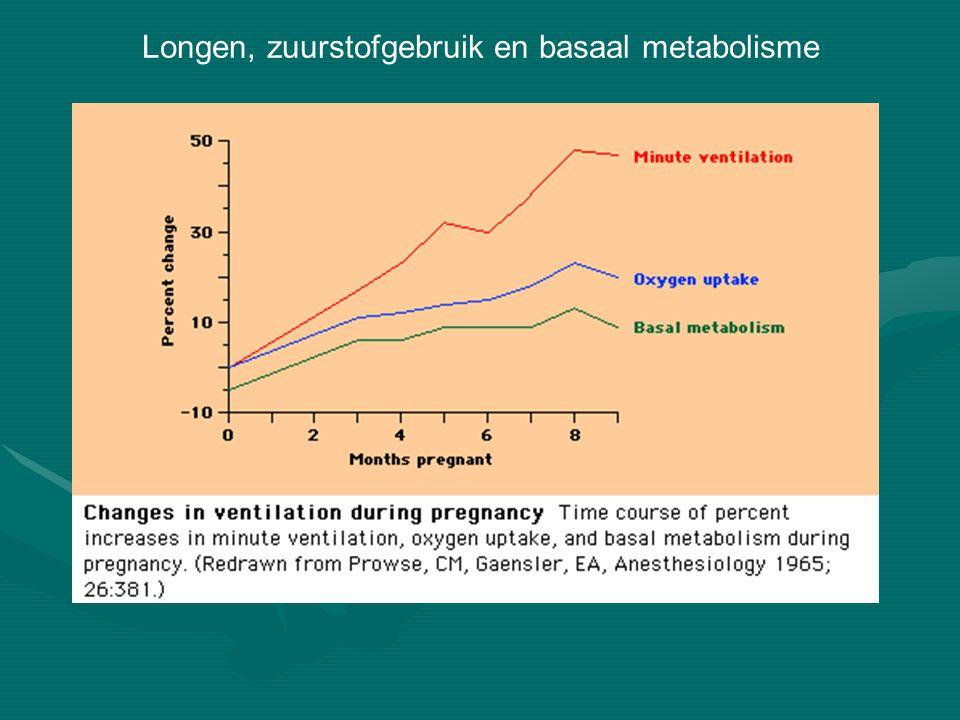 Longen, zuurstofgebruik en basaal metabolisme