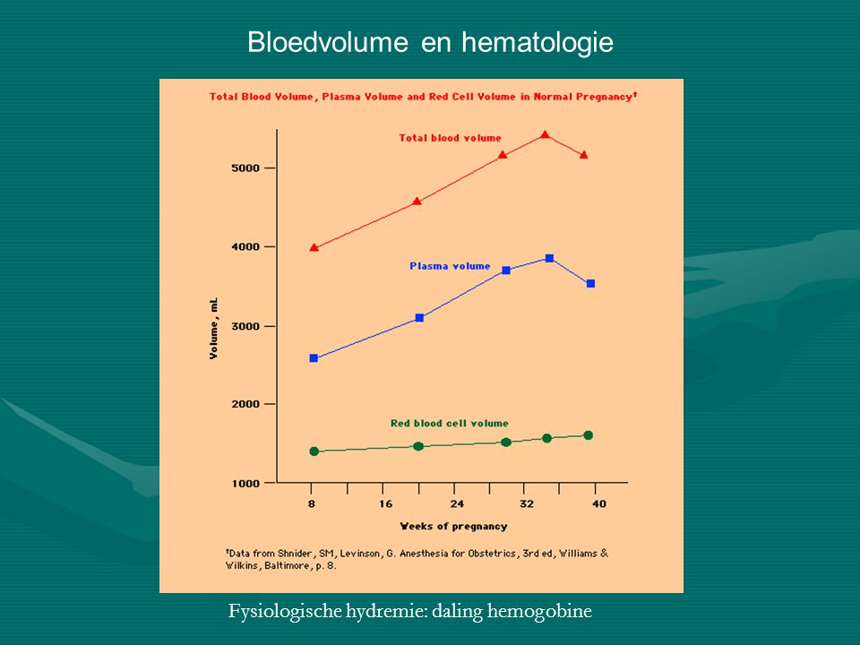 Bloedvolume en hematologie
