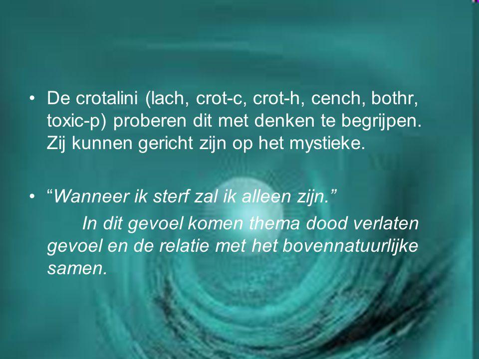 De crotalini (lach, crot-c, crot-h, cench, bothr, toxic-p) proberen dit met denken te begrijpen. Zij kunnen gericht zijn op het mystieke.