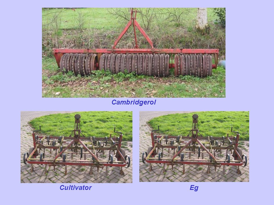 Cambridgerol Cultivator Eg