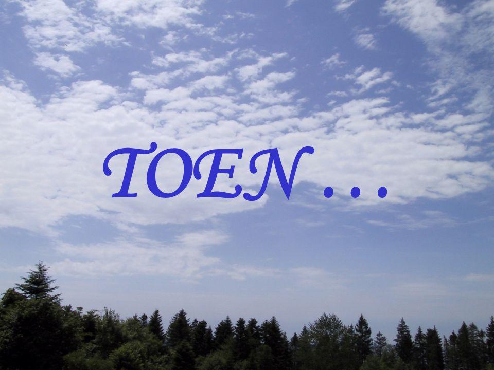 TOEN … 4