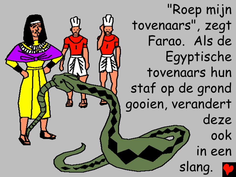 Roep mijn tovenaars , zegt. Farao. Als de. Egyptische. tovenaars hun. staf op de grond. gooien, verandert.