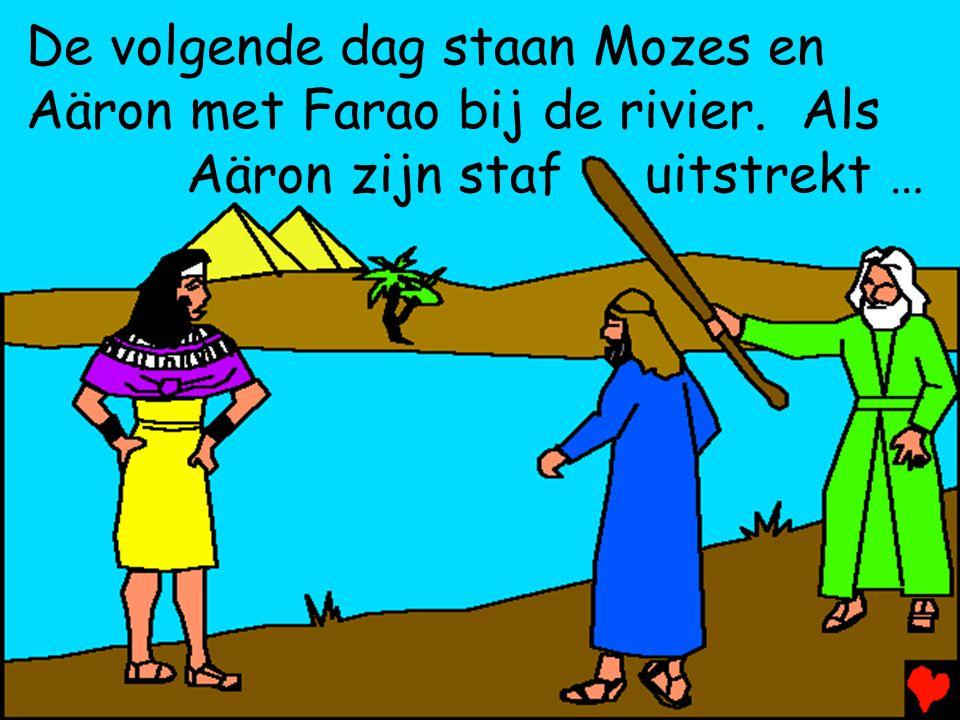 De volgende dag staan Mozes en Aäron met Farao bij de rivier. Als