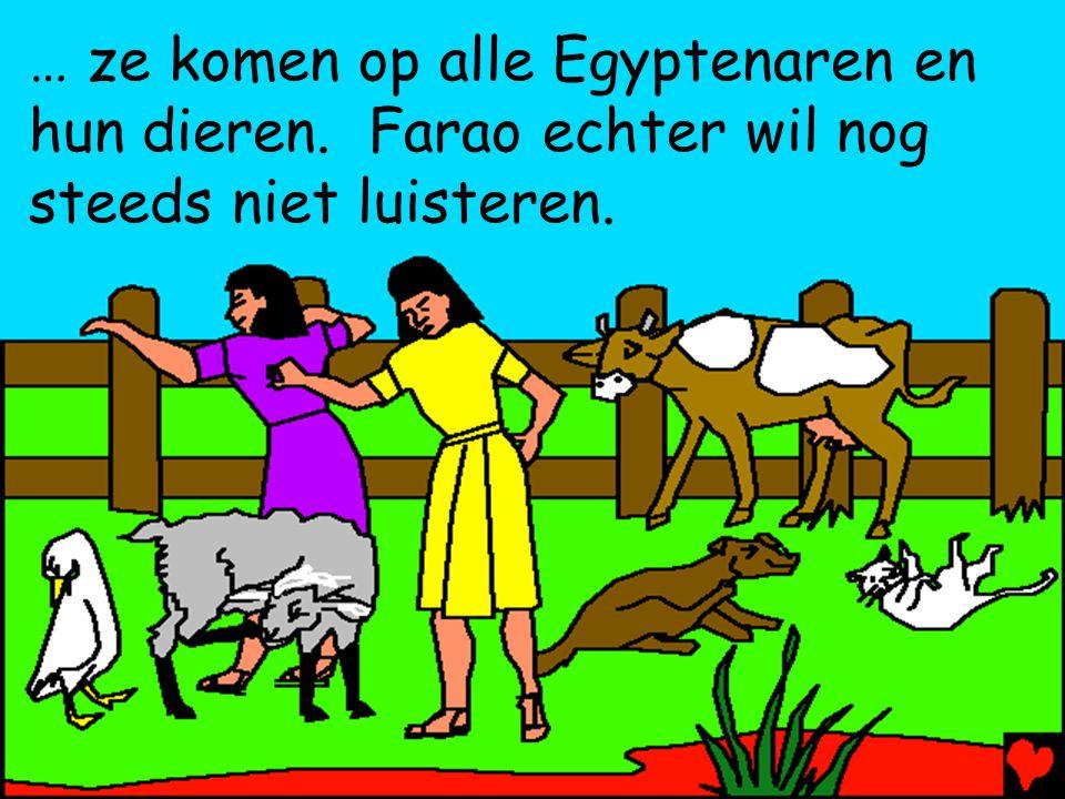 … ze komen op alle Egyptenaren en hun dieren