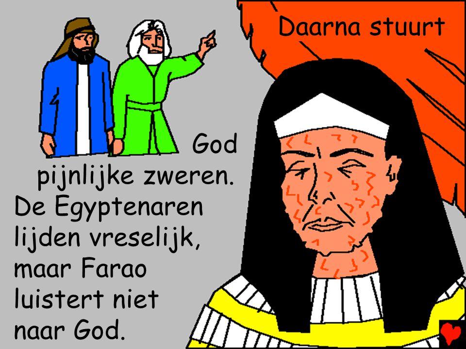 Daarna stuurt God. pijnlijke zweren. De Egyptenaren. lijden vreselijk, maar Farao. luistert niet.