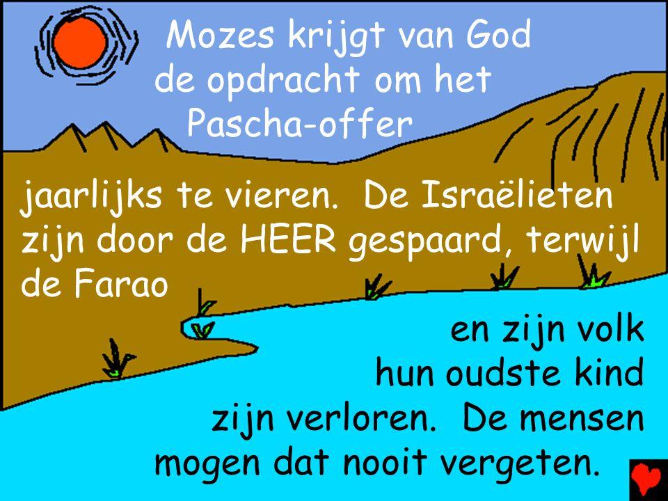 Mozes krijgt van God de opdracht om het. Pascha-offer. jaarlijks te vieren. De Israëlieten zijn door de HEER gespaard, terwijl de Farao.