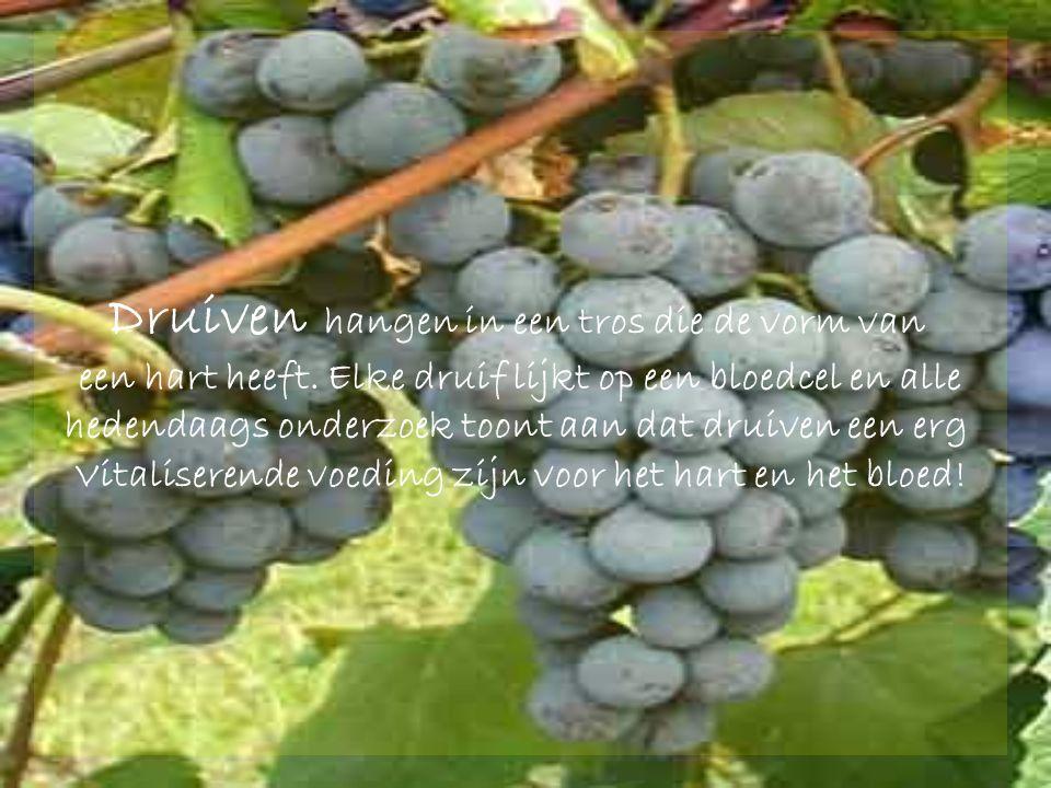 Druiven hangen in een tros die de vorm van