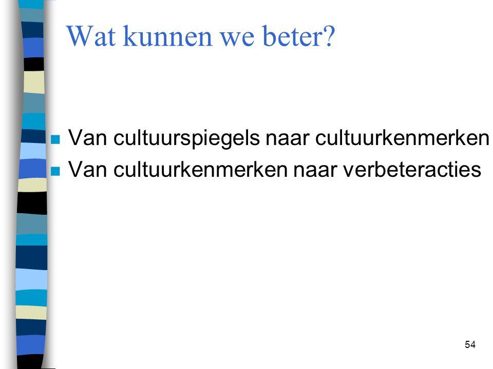 Wat kunnen we beter Van cultuurspiegels naar cultuurkenmerken