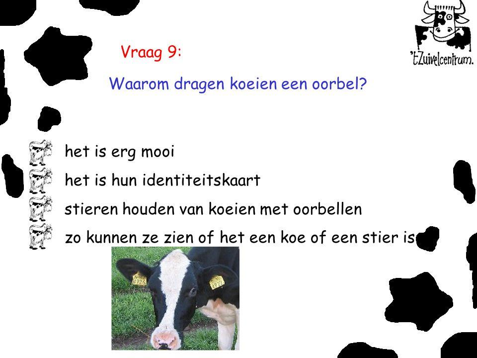 Vraag 9: Waarom dragen koeien een oorbel het is erg mooi. het is hun identiteitskaart. stieren houden van koeien met oorbellen.