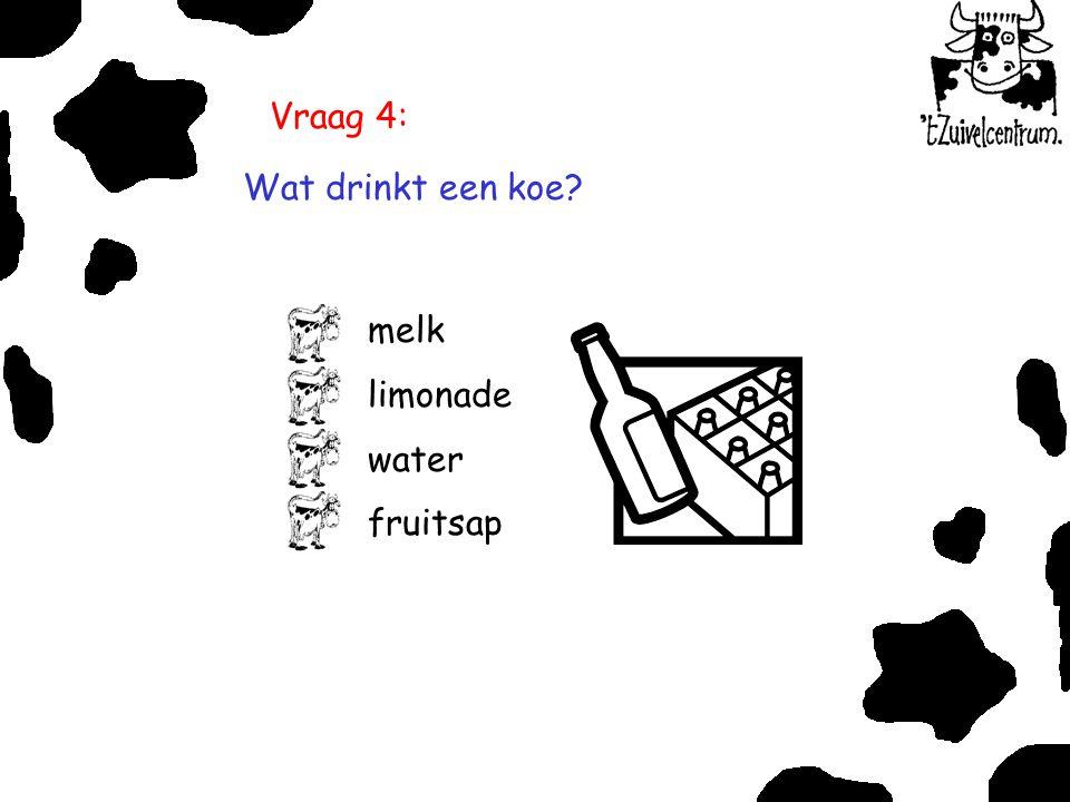 Vraag 4: Wat drinkt een koe melk limonade water fruitsap