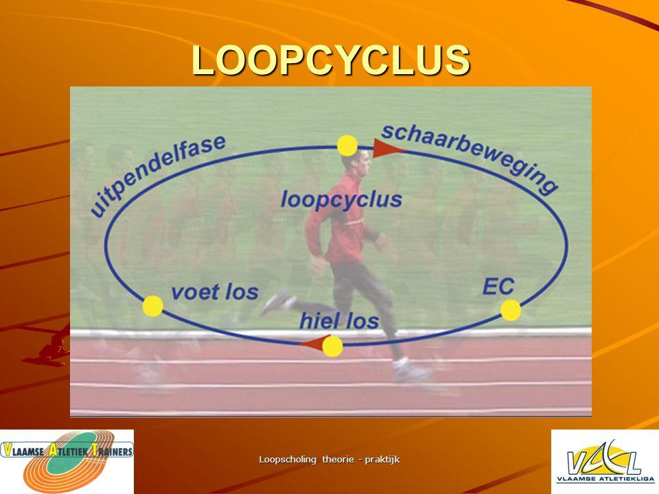 Loopscholing theorie - praktijk