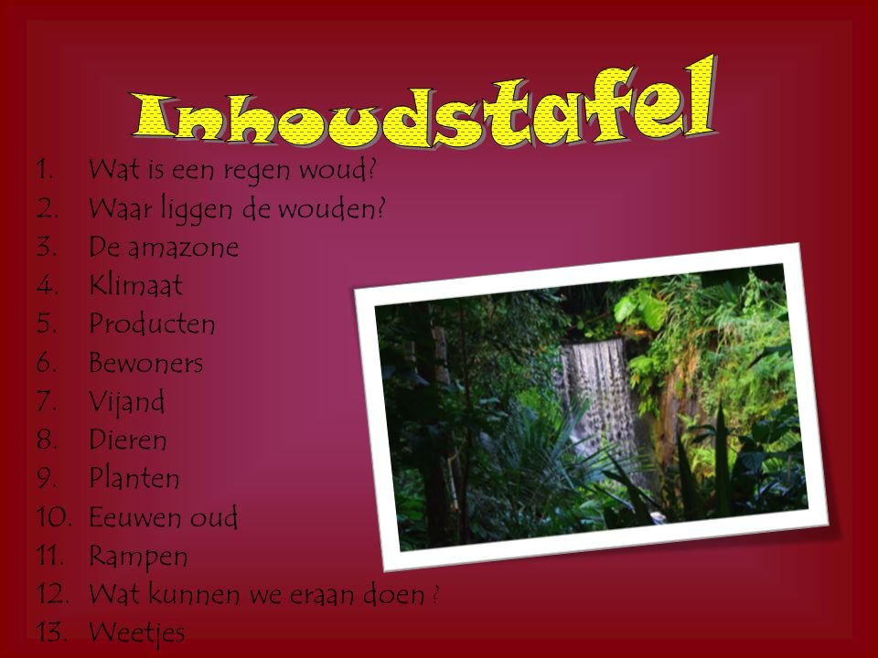 Inhoudstafel Wat is een regen woud Waar liggen de wouden De amazone