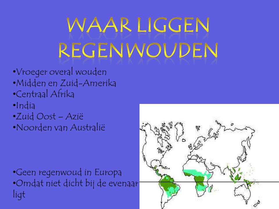 Vroeger overal wouden Midden en Zuid-Amerika. Centraal Afrika. India. Zuid Oost – Azië. Noorden van Australië.