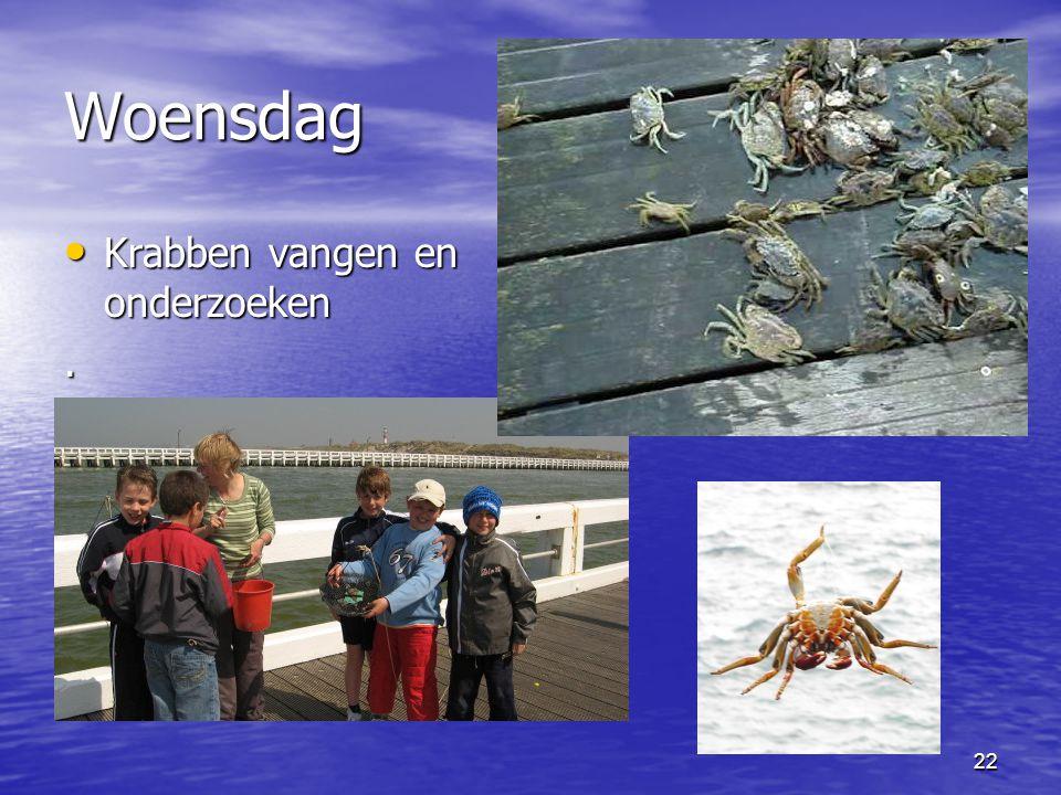 Woensdag Krabben vangen en onderzoeken .