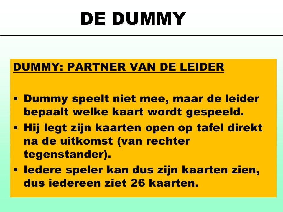 DE DUMMY DUMMY: PARTNER VAN DE LEIDER