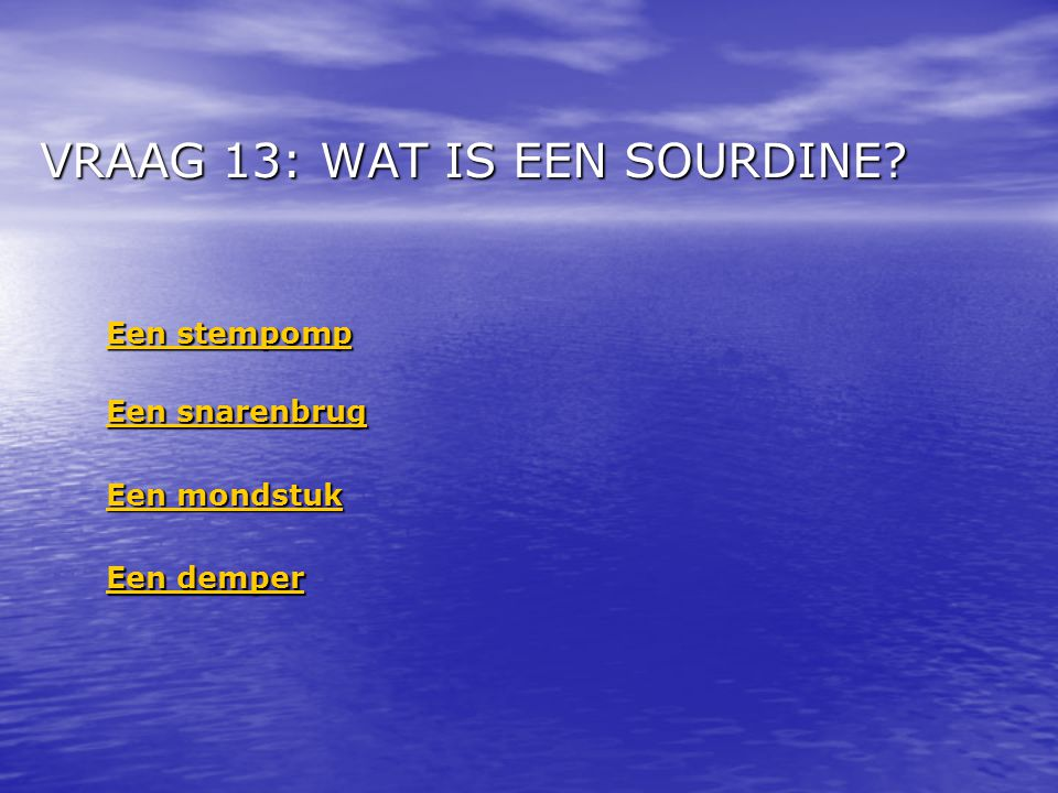 VRAAG 13: WAT IS EEN SOURDINE