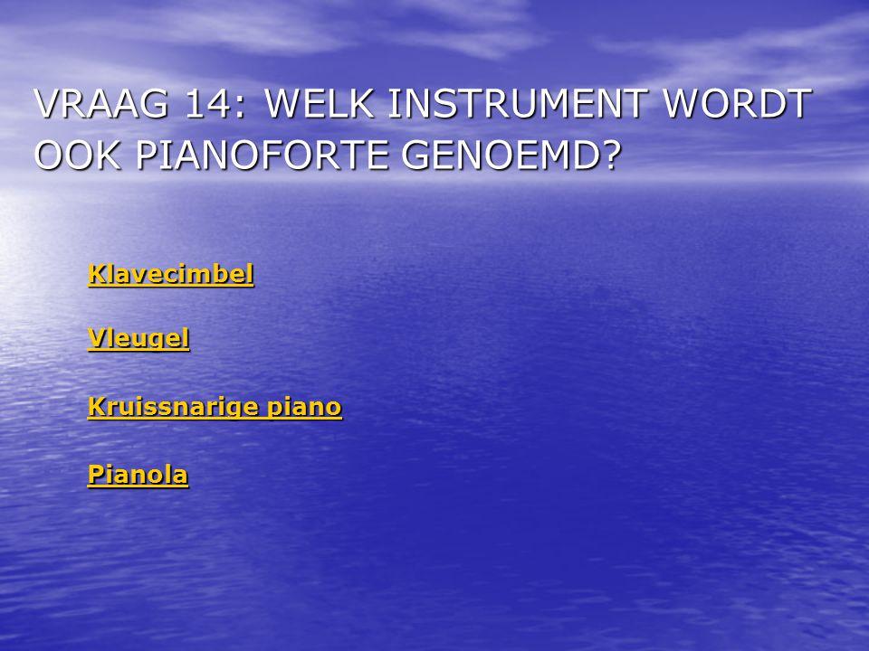 VRAAG 14: WELK INSTRUMENT WORDT OOK PIANOFORTE GENOEMD