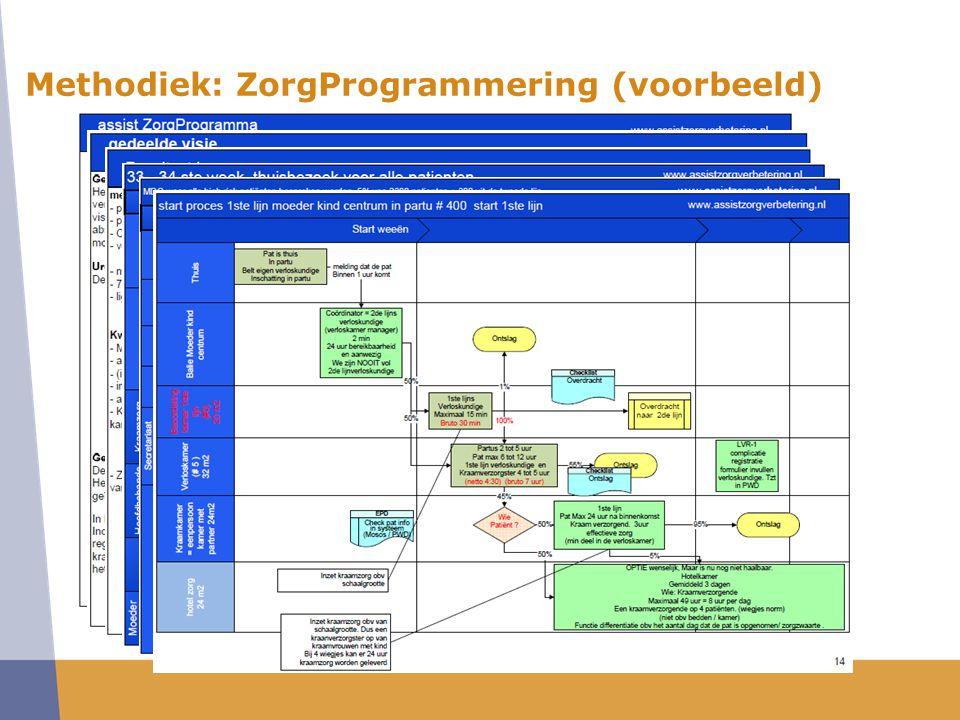 Methodiek: ZorgProgrammering (voorbeeld)