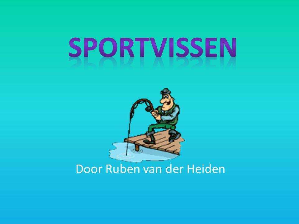 Door Ruben van der Heiden