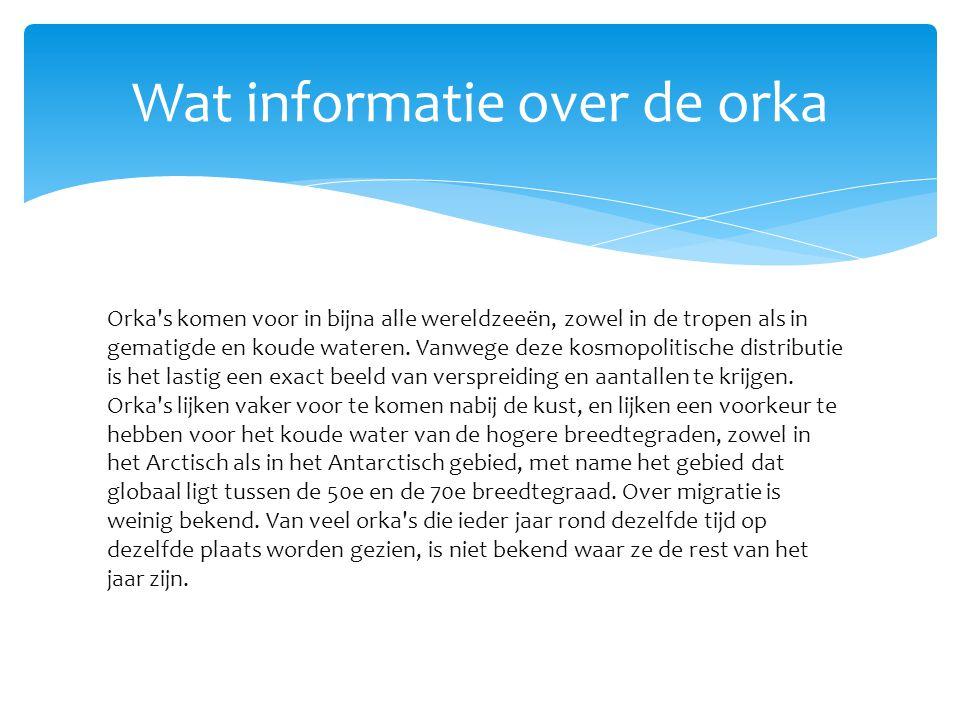 Wat informatie over de orka
