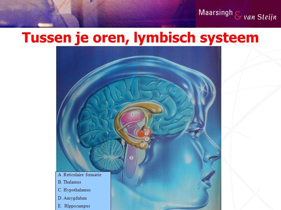 Tussen je oren, lymbisch systeem