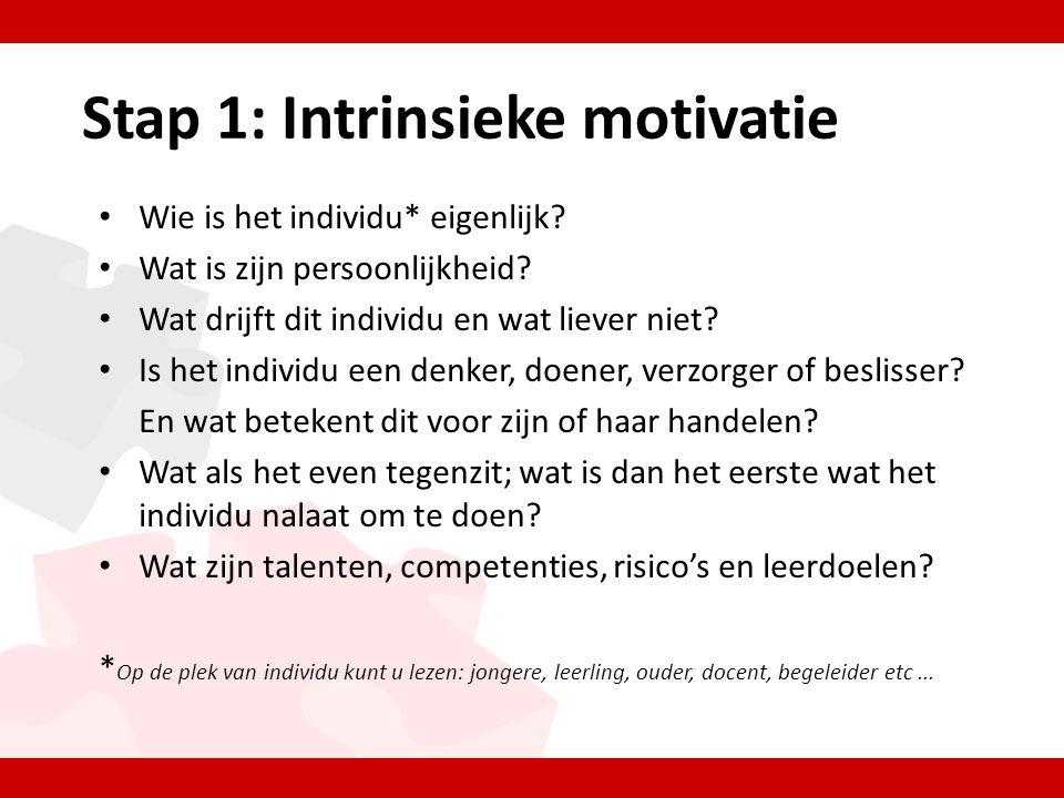 Stap 1: Intrinsieke motivatie