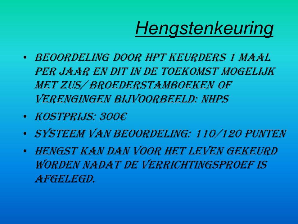 Hengstenkeuring